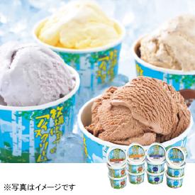 函館酪農公社 牧場仕立てのアイスクリーム