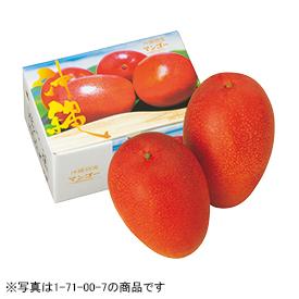 沖縄県南城市産 大城茂博さんのマンゴー