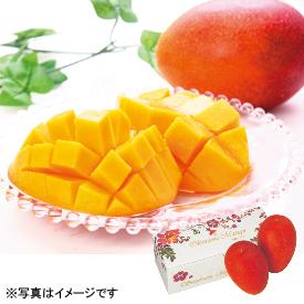 沖縄県糸満市産 山城栄徳さんのマンゴー