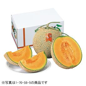 北海道産 新十津川メロン(赤肉)